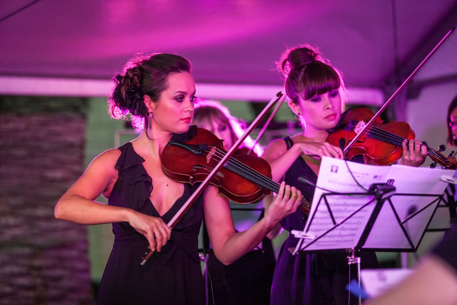 Our outdoor public orchestra concert in Claremont, Perth.