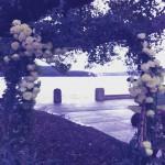 poho_flowers