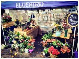 bluebird-flowers