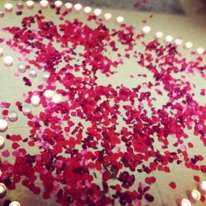Petals_1